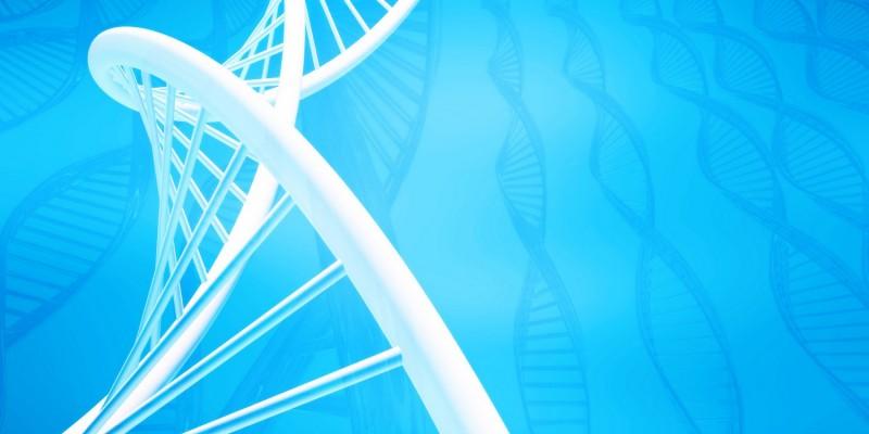 Die rheumatoiden Arthritis ist vermutlich auch genetisch bedingt