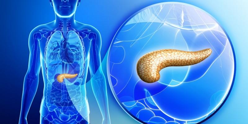 Lage der Bauchspeicheldrüse