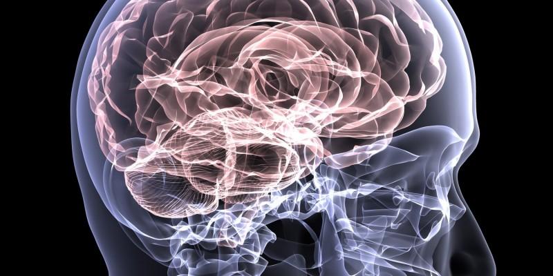 Der Ursprung liegt im Gehirn