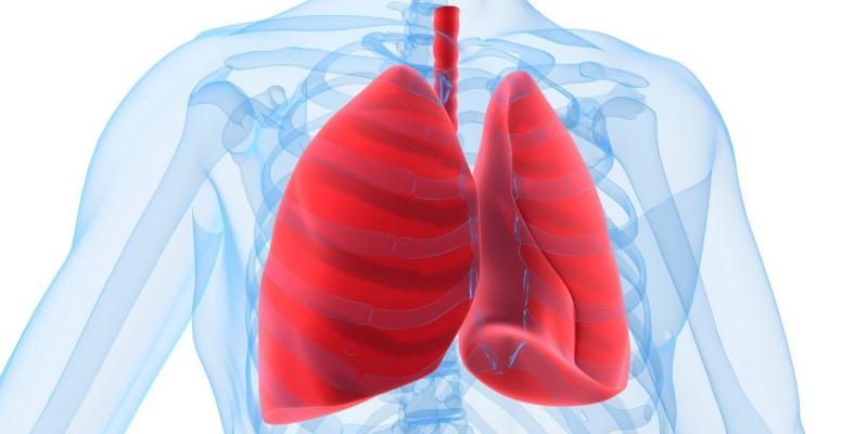 Die Lunge ist betroffen