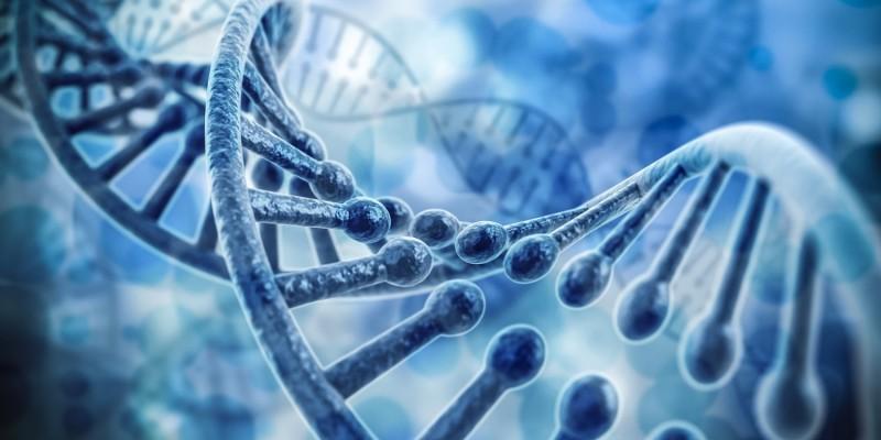 ADHS ist häufig genetisch bedingt
