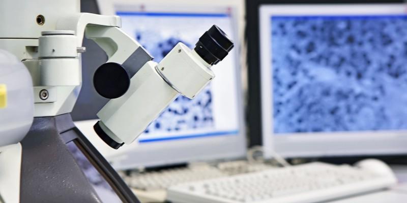 Eine Gewebeprobe wird mikroskopisch untersucht