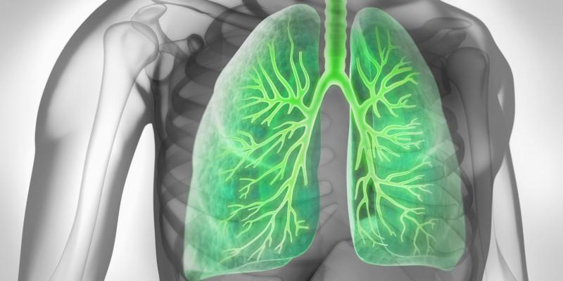 schatten auf lunge