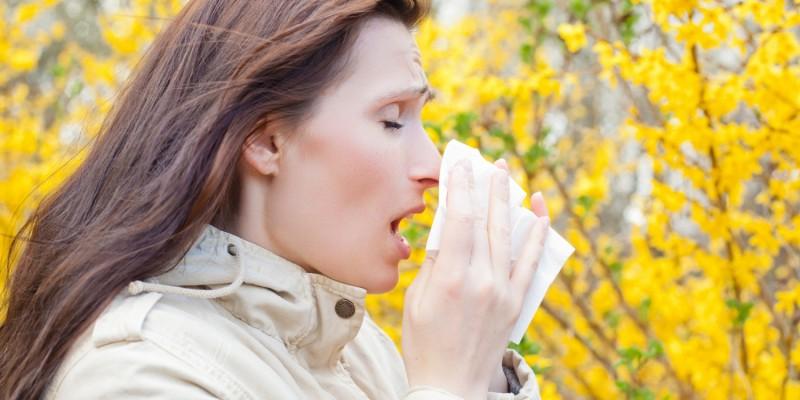 Niesreflex durch Pollen